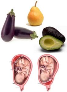 Avocado-Pear-Eggplant-Uterus-shape
