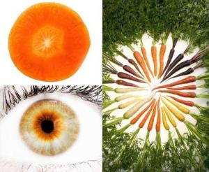 Carrot-eye-iris-shape