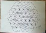 Цветето на Живота, три завъртания на кръговете